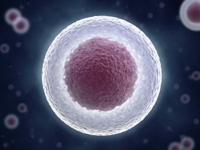 Google Image Result for http://www.sanfranciscoplasticsurgeryblog.com/wp-content/uploads/2011/05/Stem_Cell_Surgery.jpg