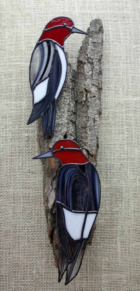 Red Headed Woodpecker on real weathered Cottonwood Bark.