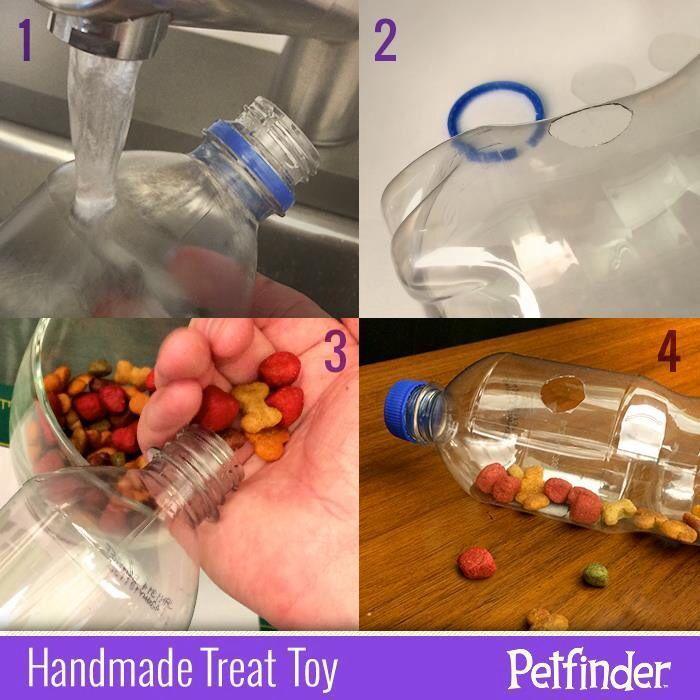 3 Creative Diy Cat Toys Dog Treat Toys Interactive Dog Toys