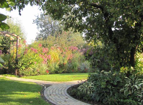 Сочетание растений в саду. Посконники, злаки, хосты