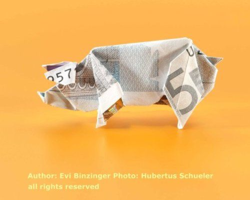 Origami pig made of a 5 euro bill! Do the shops actually accept this?