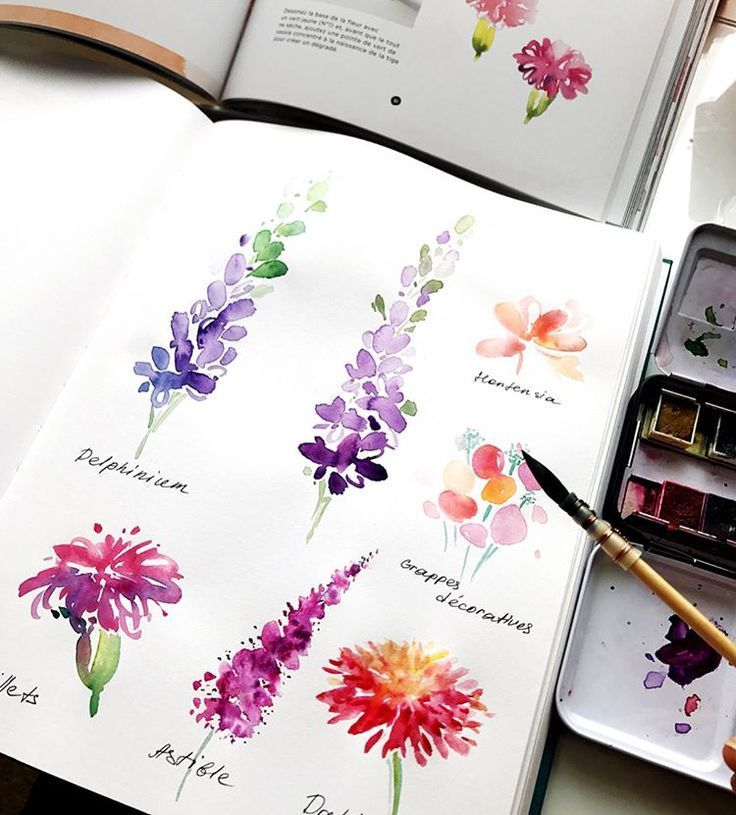 Simple Watercolor Guide For Beginners Supplies Easy Watercolor