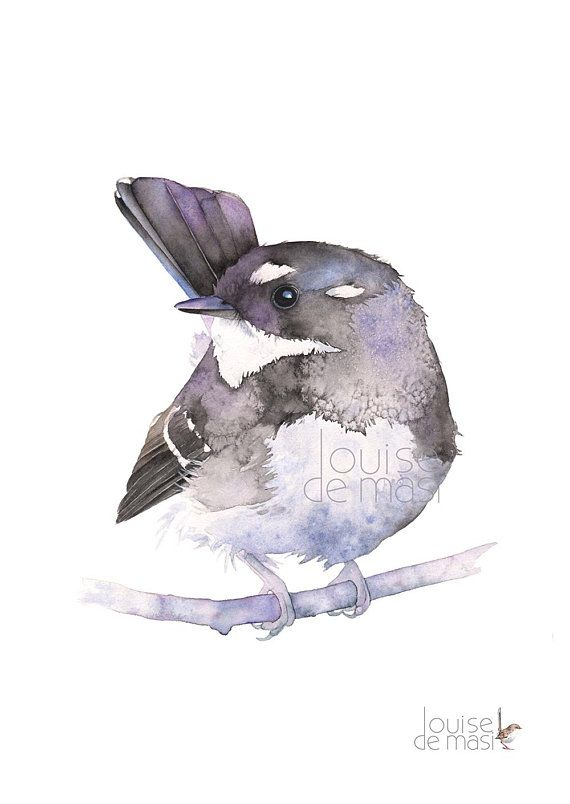 Grey Fantail Print Of Watercolour Painting A3 Size Gf27718 Grey