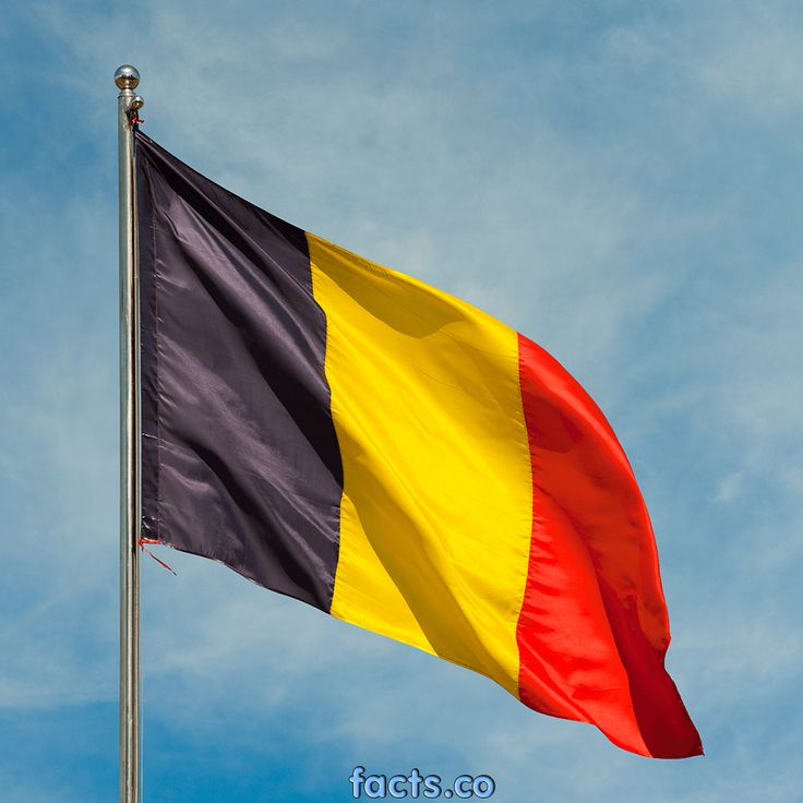 Belgium Flag - All about Belgium Flag - colors, meaning, information & history