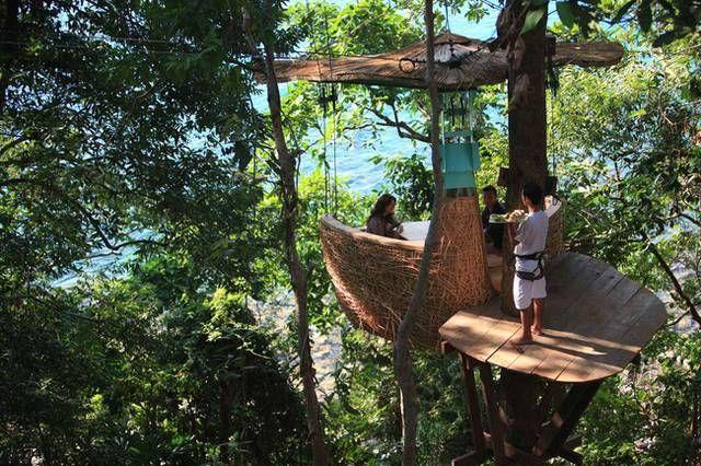 """CENA IN UN NIDO: A Koh Kood in Thailandia c'è un hotel in cui si dorme in case sull'albero e si mangia, ci si rilassa e si beve in veri e propri nidi per umani. I camerieri si muovono con la zip line per servire ai """"tavoli""""."""