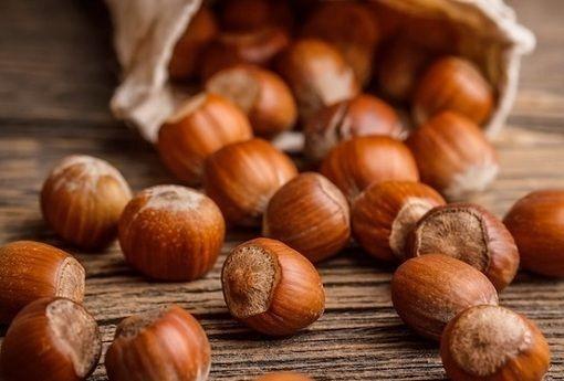 De beste hazelnoten ter wereld komen uit… Italië! Uit Piemonte | Ciao tutti - ontdekkingsblog door Italië