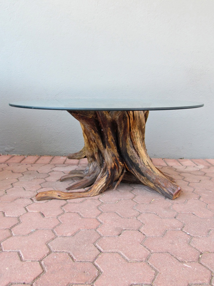 organic cedar coffee table,  like the trees from which this organic cedar coffee table takes its form, each stump has a unique sculptural beauty. a thick glass top reveals the stumps rings and rivets in cross section, creating the perfect living room accessory. as with all things nature provides, these coffee tables will be available again late spring.
