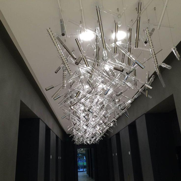 #Ixi by Filippo Caprioglio: #Leucosproject for Citrus Center; #Orlando - #Florida (USA) #Leucosproject