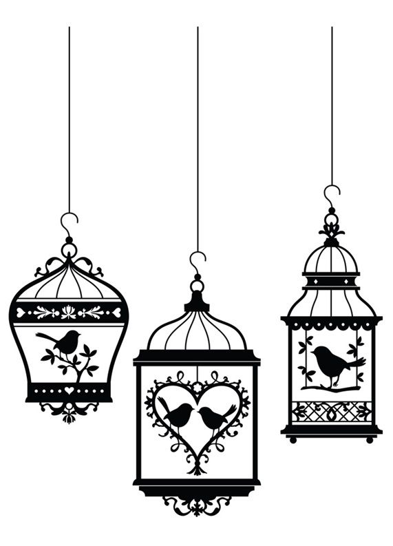 Three bird cages