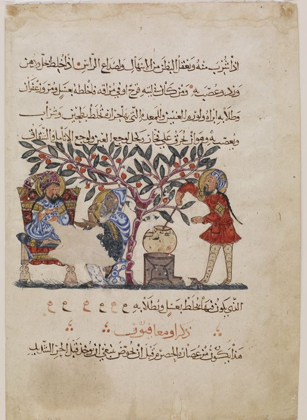 Arts of the Islamic World | Folio from an Arabic translation of the <i>Materia medica</i> by Dioscorides (ca. 40-90 C.E.); recto: text; verso: Preparation of medicine from the flower of the wild vine | F1932.22