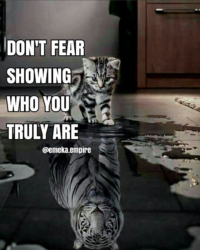 """""""Never be afraid to show the beast in you, everyone has a beast inside ,never show yours commonly and never be afraid to show it.(never start a fight and never back down from one. . Follow @emeka.empire Follow @emeka.empire 💡 Turn on notifications ,wake up hungry eat motivation as breakfast and go to bed satisfied.  Credit @successdiaries. #emeka.empire #followforfollow"""" by @emeka.empire. #startupgrind #successmindset #businesslife #inspiringquotes #successquote #entrepreneurquotes #ceo…"""