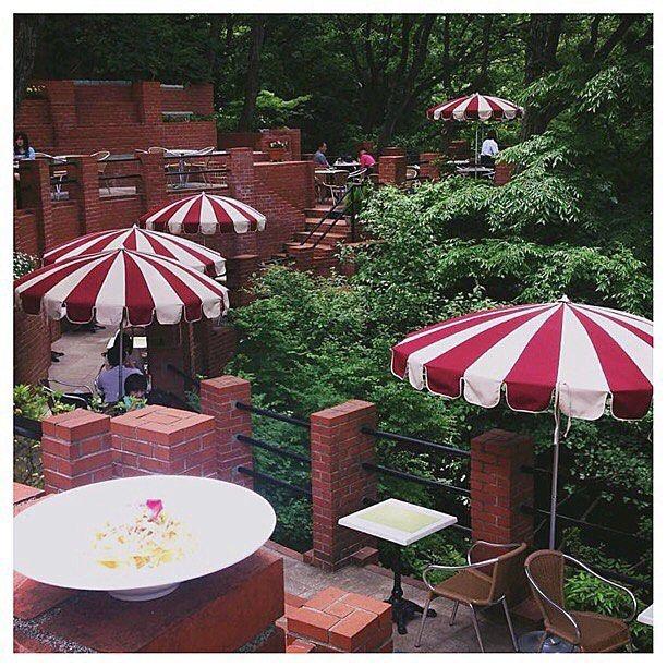 【t.yonesu】さんのInstagramをピンしています。 《Japanese cafe (Another name is Laputa) 樹ガーデン(鎌倉)ラピュタと言われるカフェ  #love #instagood #beautiful #happy #follow #life #japan #travel #dog #art #nature #photo #cafe #food #フォロー #写真好きな人と繋がりたい #写真 #カメラ #犬 #空 #海 #日本 #鎌倉 #湘南 #オシャレ #夕暮れ #おうちごはん #カフェ巡り #パスタ》