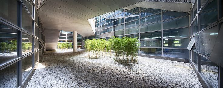 Gallery of Library of South University of Science and Technology of China / Urbanus - 19