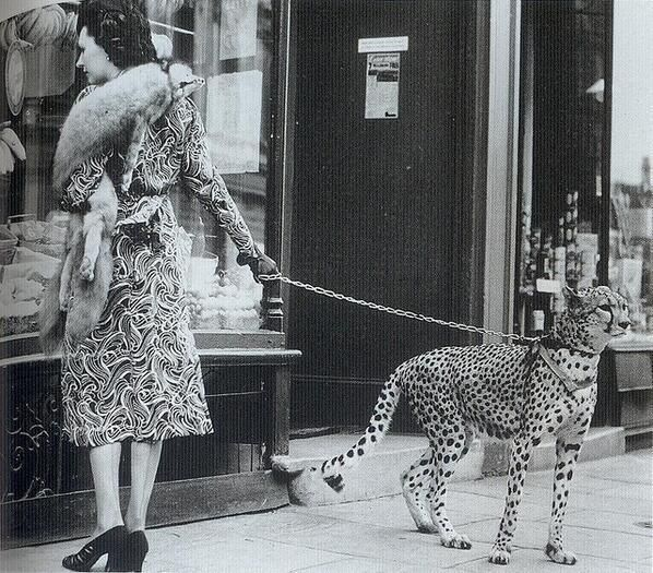 Phyliss Gordon shopping with her cheetah 1939