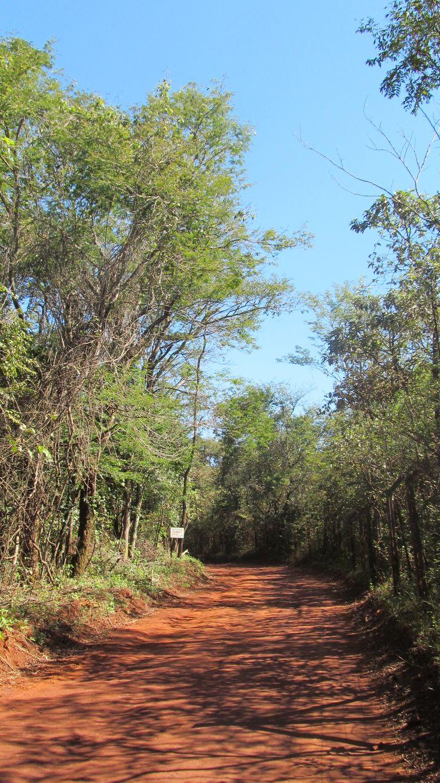 Mais uma dessas estradas incríveis aqui em Minas.. - algum lugar entre Brumadinho e Casa Branca - Brasil