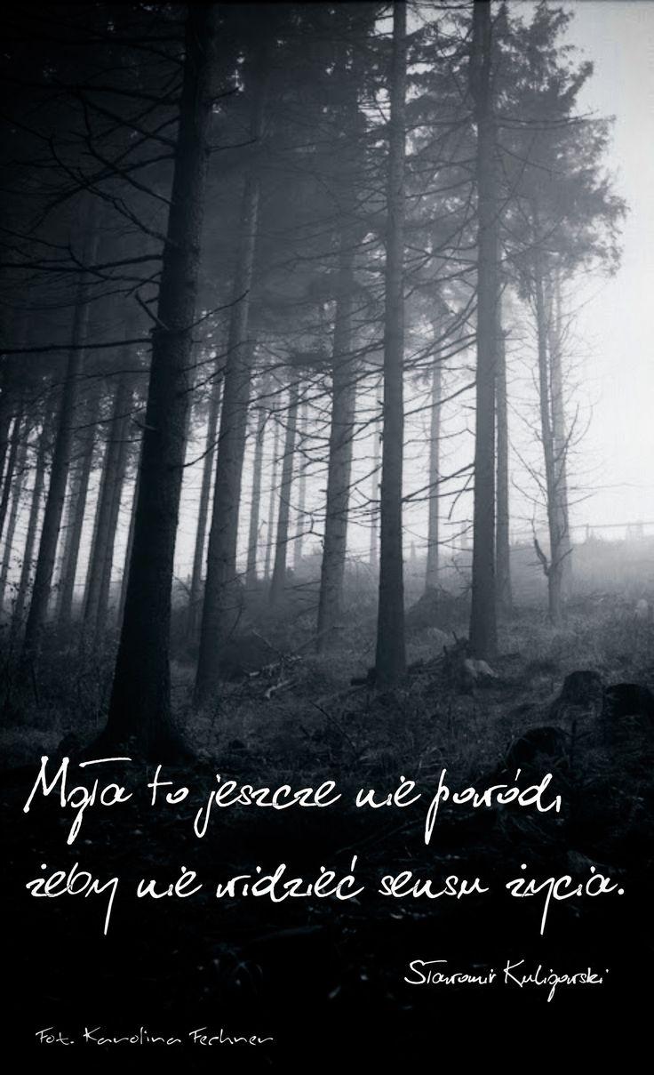 Mgła… – Sławomir Kuligowski