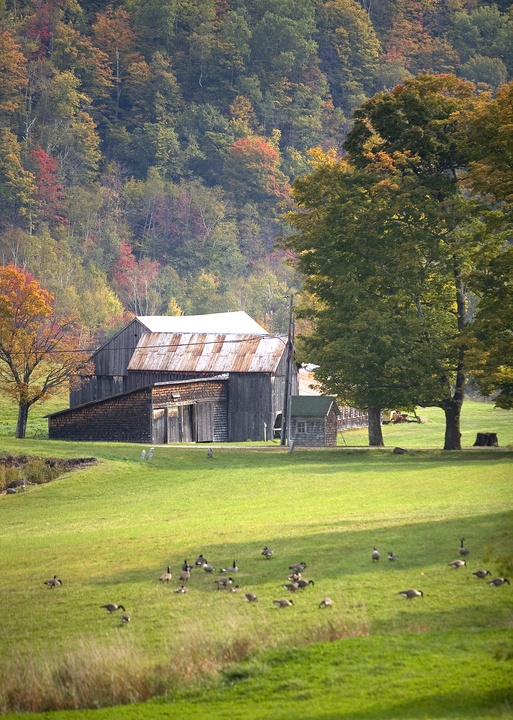 68 Best Images About New England Barns On Pinterest