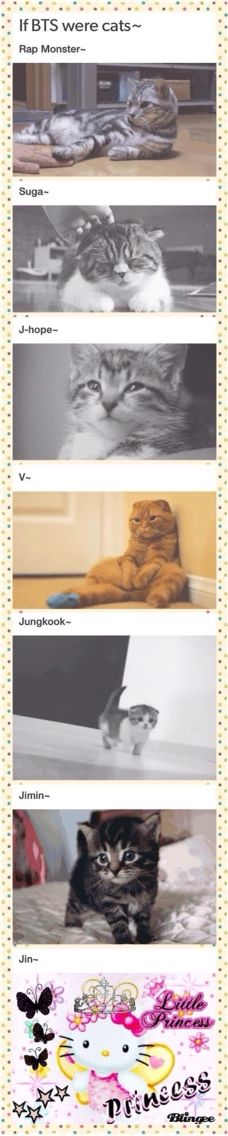 AWWWW, look at Kookie! ☺️ But Jin tho, LMAO!......V is hysterical :P