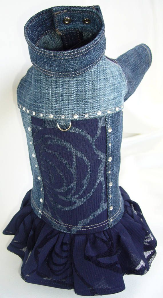 Denim dog dress. Jeans dog dress.Dog dress with rhinestones. Jeans dog jacket. Denim dog jacket. Yorkshire Terrier clothing. Chihuahua dress