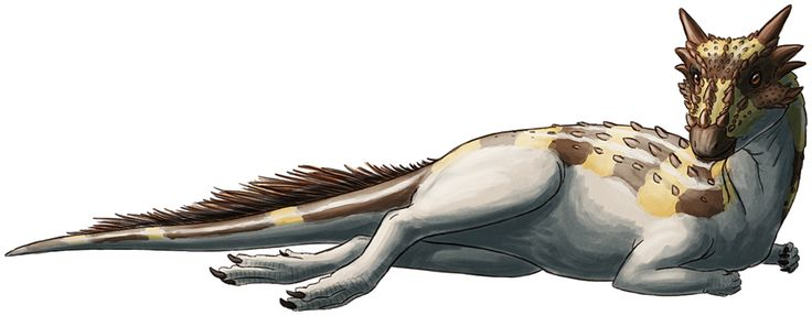 """alphynix: D is for Dracorex Dracorex hogwartsia was a pachycephalosaur from the very end of the Cretaceous of North America, about 66 million years ago. The one existing specimen was a near-mature juvenile estimated to have been approximately 3m (10ft) long, and it's likely that the full adult size wasn't much larger than that. Its name, """"dragon king of Hogwarts"""", is both a reference to its draconic-looking head and a tribute to the Harry Potter series. Known only from a single skull and a…"""