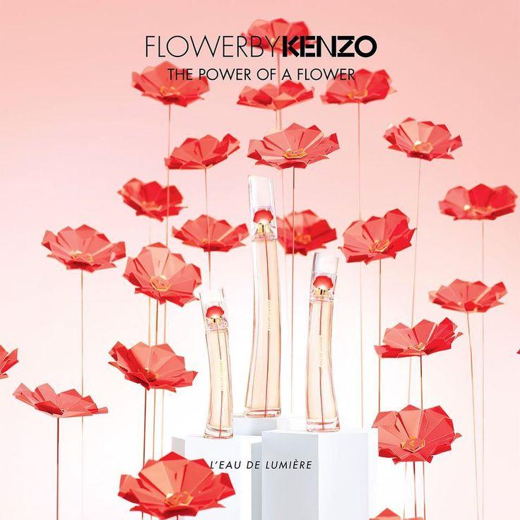 124 отметок «Нравится», 2 комментариев — @maudvantours в Instagram: «#FlowerByKenzo #ArtyPoppy  @kenzoparfums X @maudvantours - #pic by @davinamuller @agencefigure -…»