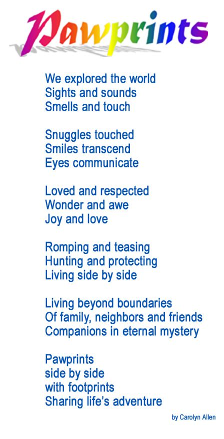 Rainbow Bridge Pet Sympathy Poem | Rainbow Bridge for Pets from Arkansas Pet services