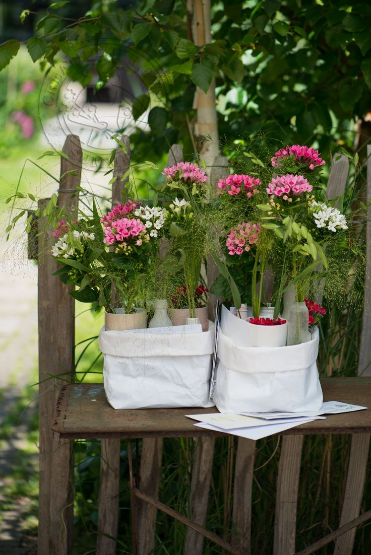 You've got mail (old fashion way) #bouvardia flowers
