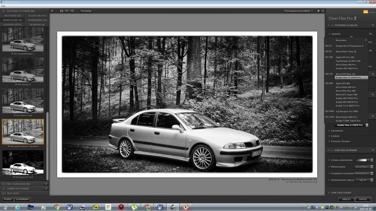 RudaKredka: Silver Efex Pro 2
