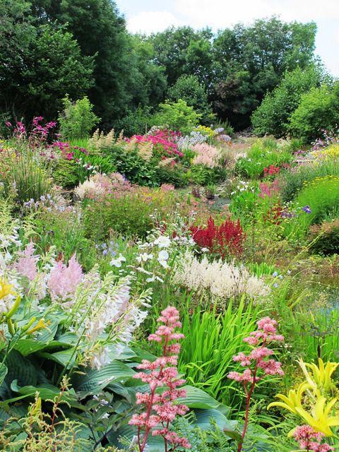 7 Best Images About Naturalistic Garden Design On