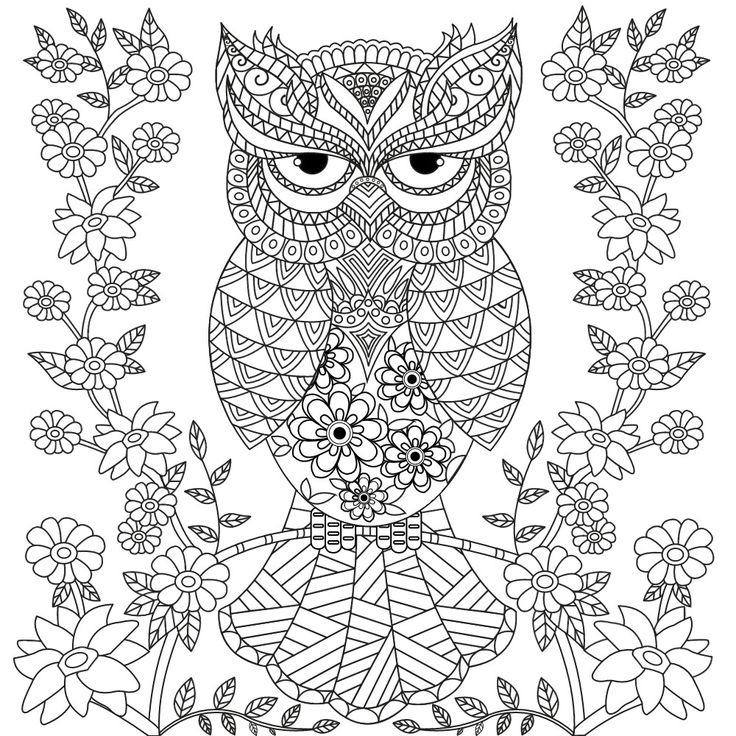 712 Best Coloring Owls Images On Pinterest