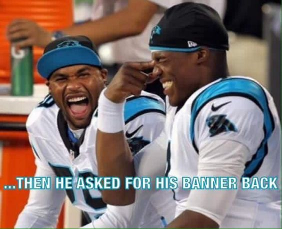 Photos: Our favorite Carolina Panthers memes