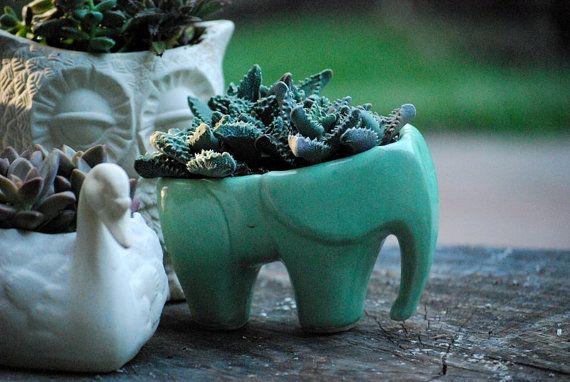 Elephant  planter in mint green ceramic succulent planter