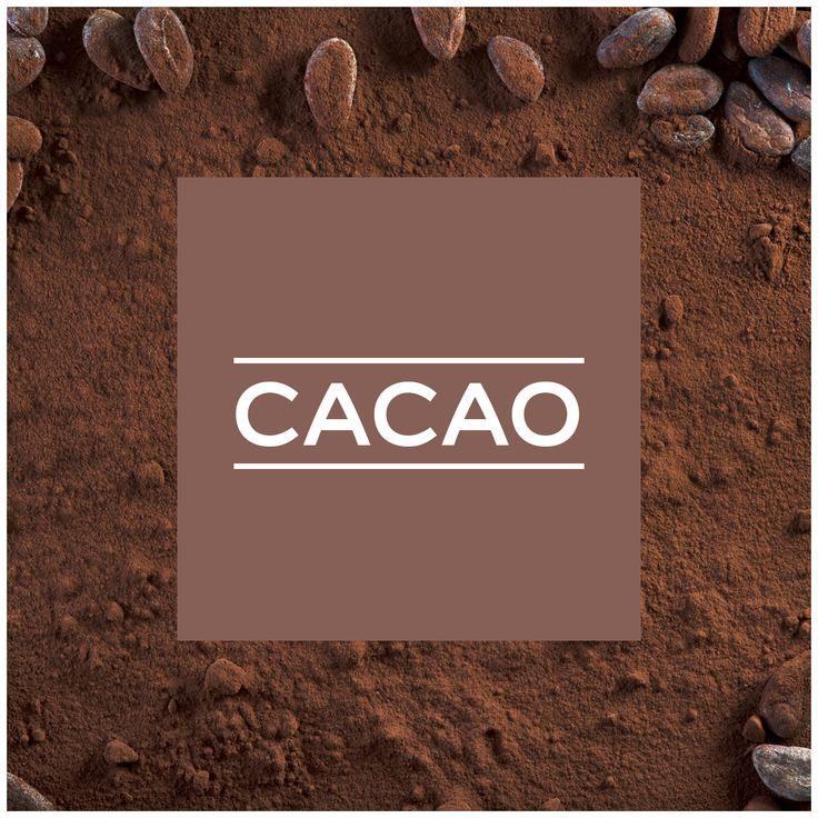 Couleur Cacao et chocolat Dulux Valentine