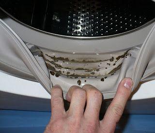 Ты вдруг стала замечать, что после стирки вещи приобретают  неприятный запах, а на уплотнительных резинках стиральной машинки или в  лоточках для порошка появились черные пятна? Знай — это черная пл…