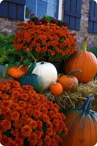 TONS! And I mean TONS of Halloween/Fall Decor ideas from the Thrifty Decor Chick: Thrifty Decor Chick, Decor Ideas, Fall Mums, Fall Decor, Fall Ideas, Halloween Fal Decor, Hay Bale, Front Porches, Fall Display