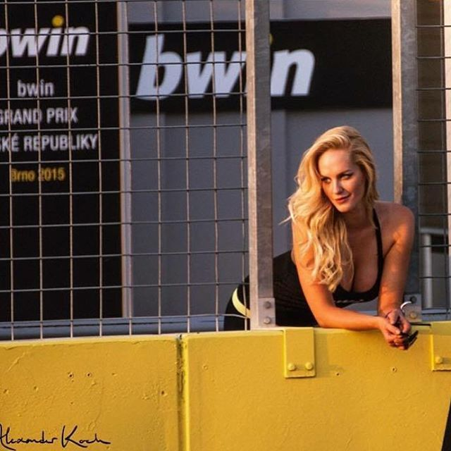 53 best images about grid girls   bwin on pinterest