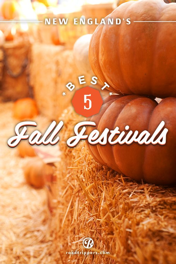 Fall festivals were made for New England! These fun filled fests are just what you need to get in the spirit this autumn season!
