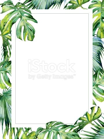 Watercolor illustration of tropical leaves, dense jungle. Hand painted. Banner with tropic summertime motif may be used as wedding or greeting card. Invitation template. Holyday or birthday greeting