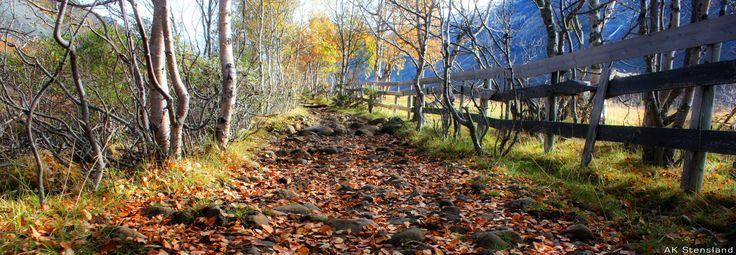Foto: AK Stensland, Jotunheimen, Norge