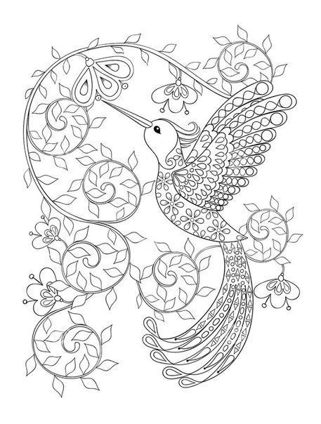 Новости | Colouring pages for Adults | Printable adult coloring ...