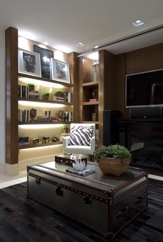 Projetos transformam sala de TV em cinema de luxo; confira - Terra Brasil