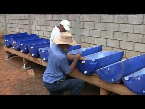 Aquaponics System – $75 –  How We Easily Build Aquaponics Garden – YouTube