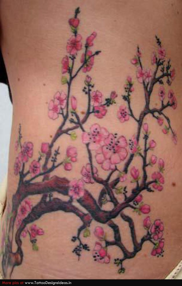 Real Cherry Blossom Branch Tattoo | www.pixshark.com ...
