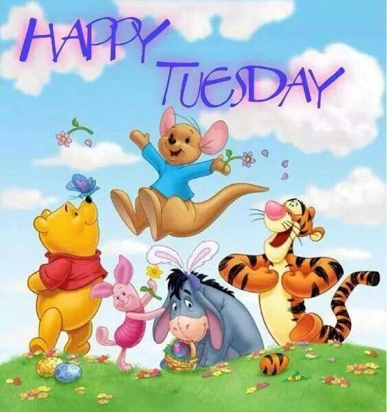 Cool Happy Tuesday