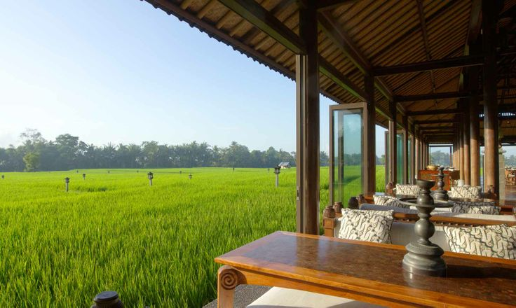 Breakfast, lunch or dinner at The Restaurant with a view of the rice paddy fields at The Chedi Club Tanah Gajah, Ubud, Bali