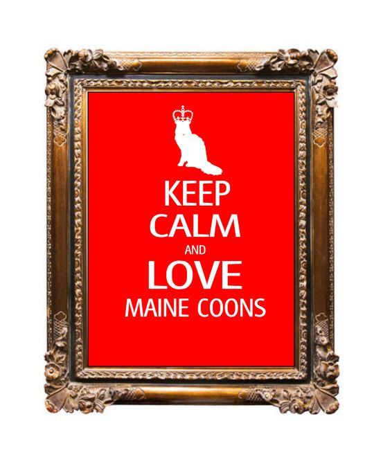 Keep Calm and Love Maine Coon Cats Art Print by DIGIArtPrints, 4.50