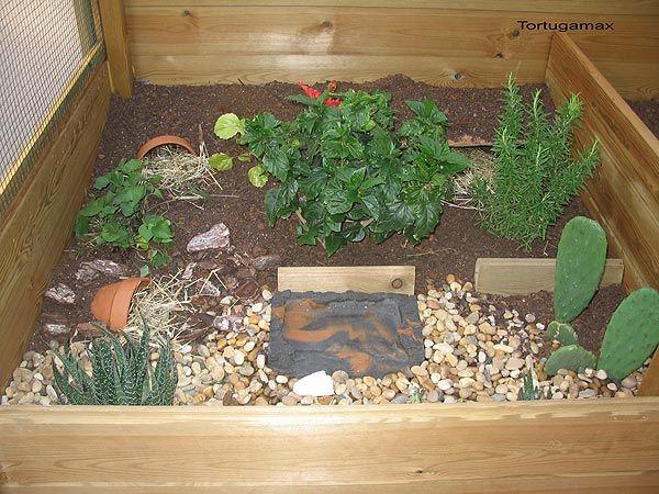 Terrario exterior para tortugas terrestres