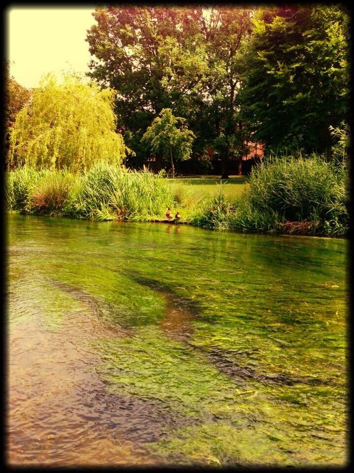 Twitter / Elliot_Coomber: @Merblogogy #mermologymonday ... your favourite water spots....