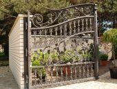 Organic design - wrought iron gate