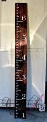 Hand Painted Wood Growth Chart Ruler - Custom Colors - Made in Texas - Dark Stain